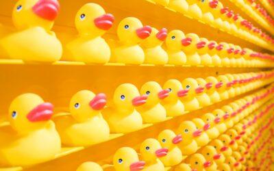 Albtraum Jahresgespräch – So wird das Vertrauen zwischen Mitarbeiter und Chef nachhaltig gestört